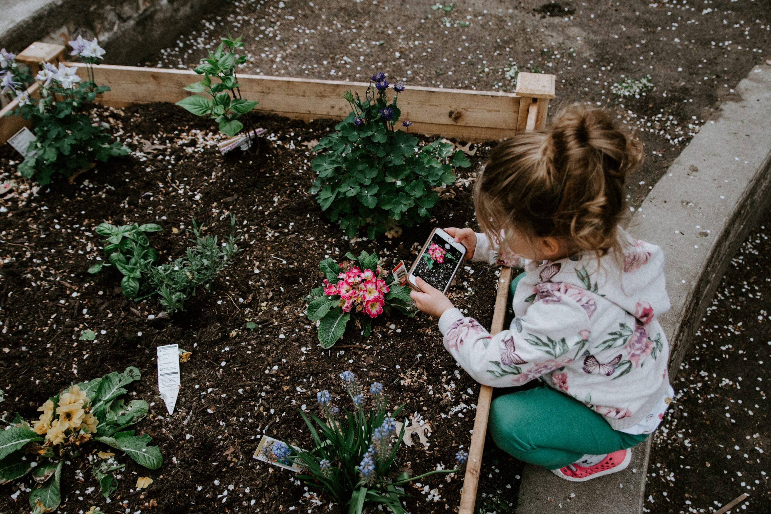 5 dicas para montar uma horta caseira com seu filho